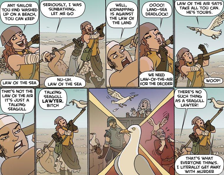 legal seagull
